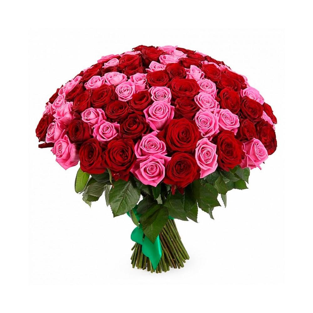 51 роза - 3060 т.р